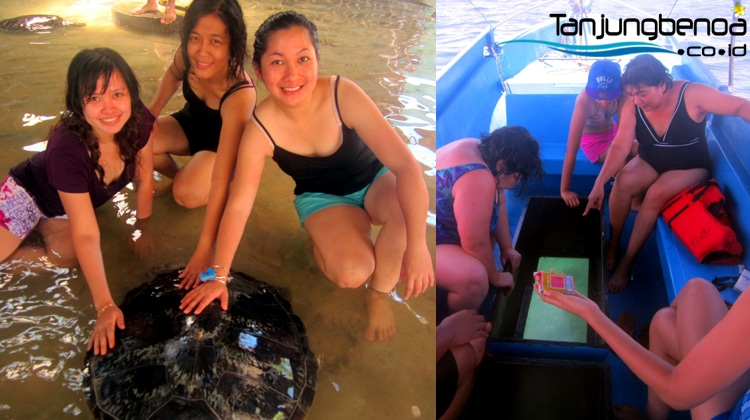 Pulau Penyu Bali + GBB di Tanjung Benoa
